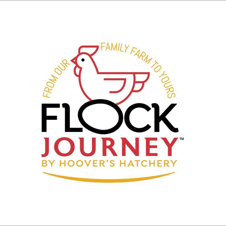 Flock Journey